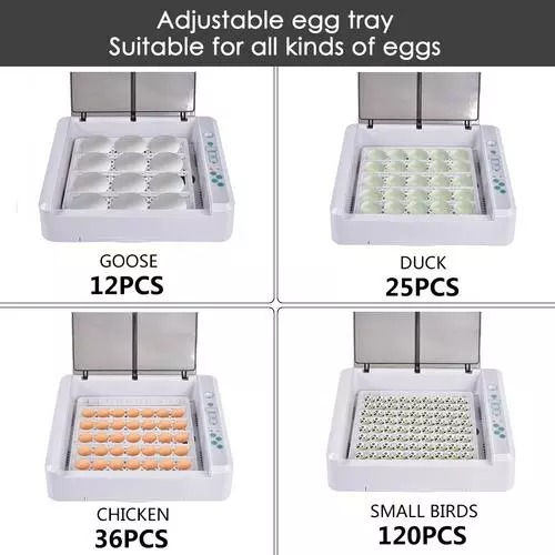 YZ-36 HHD Egg Incubator- Fully Automatic 36 Egg Mini Incubator