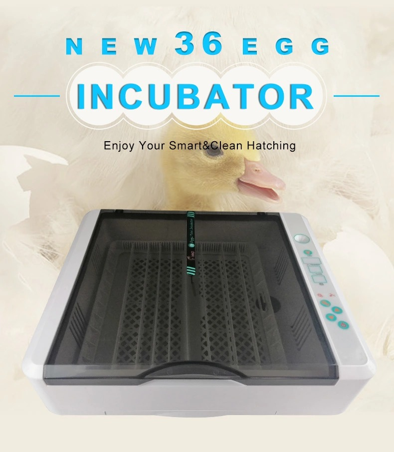 YZ-36 HHD Egg Incubator- Fully Automatic 36 Egg Mini Incubator